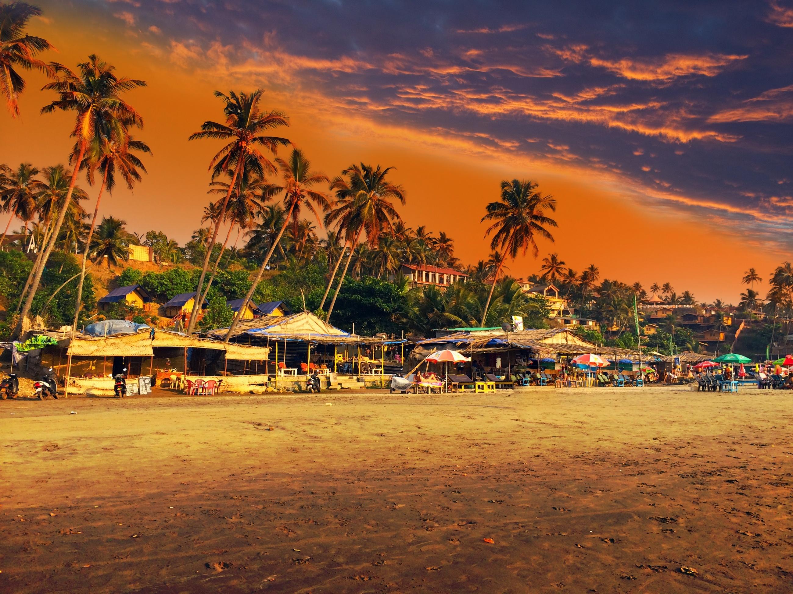 Big india. goa. beach on a sunset